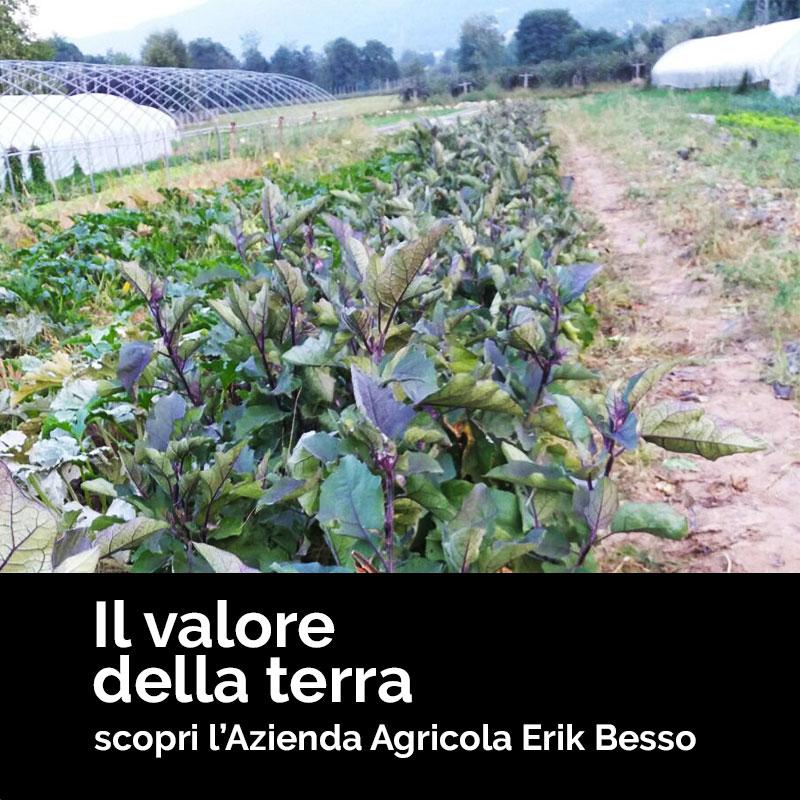 Azienda agricola Erik Besso