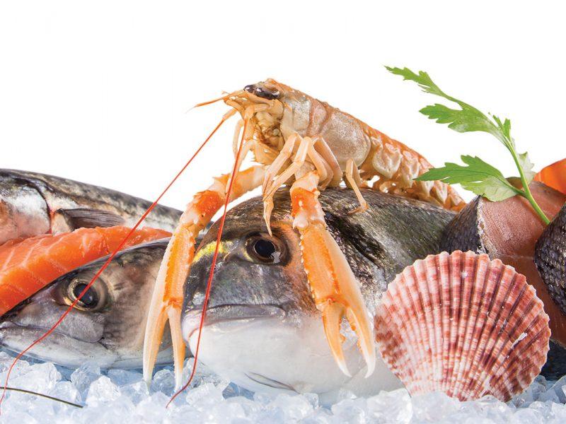 negozio_pesce_surgelato-torino_header-mobile