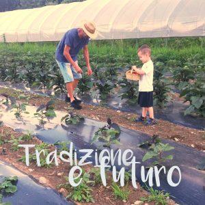 la tradizione e il futuro dell'azienda agricola Erik Besso